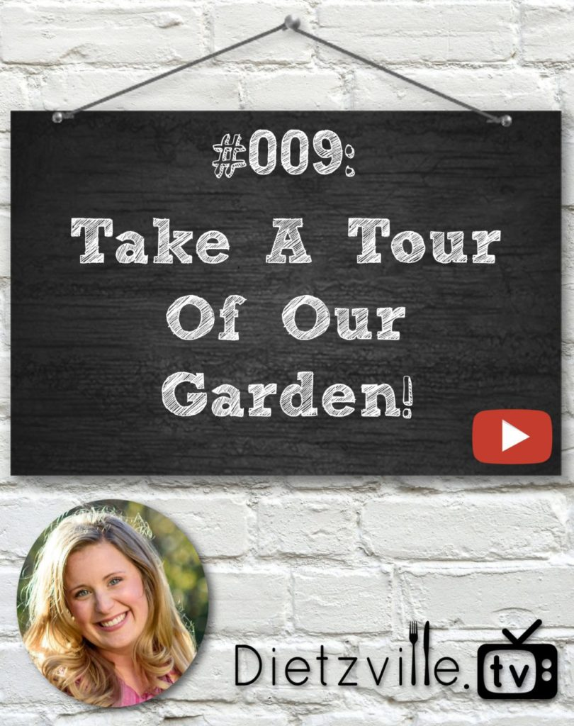 Dietzville.TV #009: Take A Tour Of Our Garden! | I've wanted a garden of my own for over a decade. But after several tries and fails, I almost gave up. This year, I was better prepared, and so far, so good! I'm proud and excited to take you on a tour of our garden! | Dietzville.tv