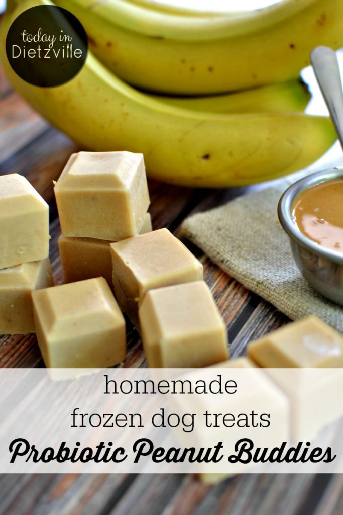 Probiotic Peanut Buddies | Here are some probiotic-rich homemade frozen dog treats to help cool off your furry friends! Made with only whole food ingredients, your puppies will be nourished while having their own sort of popsicle! I call these Probiotic Peanut Buddies, and you can whip them up in 5 minutes or less! | TodayInDietzville.com