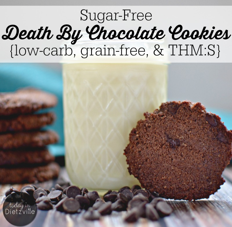 Sugar-Free Death By Chocolate Cookies {low-carb, grain-free, & THM:S} | There's something about pulling homemade cookies out of the oven that just makes me feel like a good mom. And when those cookies are grain-free and loaded with chocolate and sugar-free? Well, no one can tell me I'm not rocking this mom game. | TodayInDietzville.com