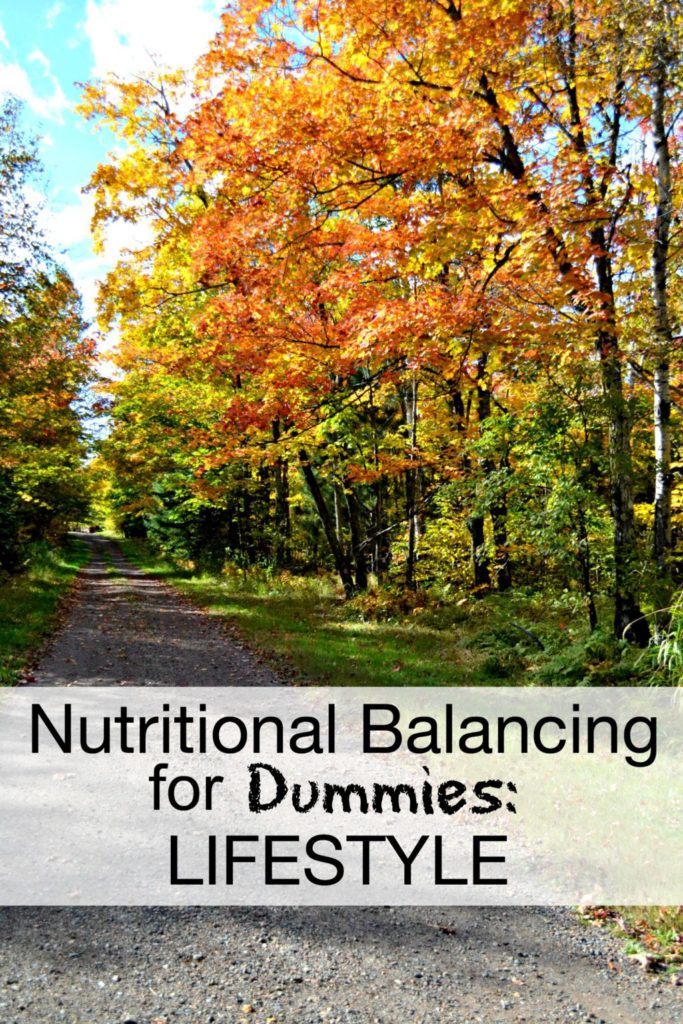 Nutritional Balancing for Dummies: Lifestyle